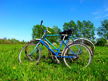 Two old bicycle Stock Photography
