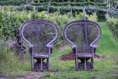 Two old braided wooden chairs Royalty Free Stock Photo