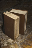 Two old brown books Stock Photography