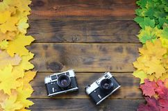 Two old cameras among a set of yellowing fallen autumn leaves on a background surface of natural wooden boards of dark brown colo Stock Photography
