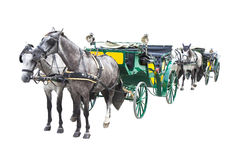 Two old carriages pulled by a couple of horses Stock Images