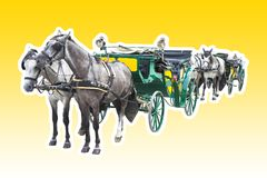 Two old carriages pulled by a couple of horses - image isolated. On yellow background Stock Image