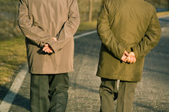 Two old confident men walking. Two old men walking in park while holding their hands on back Stock Photography