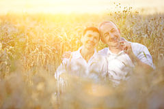Two old farmers sitting in wheat field Stock Photography
