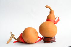 Two old Gourds Royalty Free Stock Photo