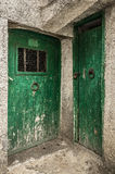 Two old green timber doors in the scuffed wall Stock Image
