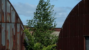 Two old hangars at summer day. Two abandoned hangars at summer day stock video