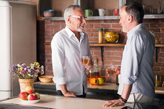Two old male friends having drinks in the apartment Stock Photography