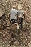 Two old men and a mule Royalty Free Stock Images