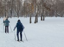 Two old people go skiing in winter Park. The view from the back royalty free stock photography