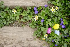 The Hidden Easter Eggs. Two old railroad ties surrounded by flowering ground cover. Three easter eggs hidden in strawberry ground cover.Background. Horizontal Royalty Free Stock Images