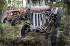 Two old rusty tractor in the forest Stock Image
