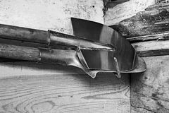 Two old shovels hang on a wooden wall. Black and white royalty free stock photo