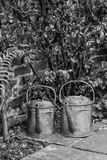 Two old watering cans in vintage style image of English contry g. Old watering cans in vintage style image of English contry garden in black and white Stock Photos