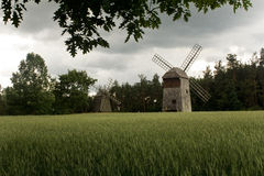 Two old windmills in the field of corn Stock Photos
