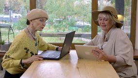 Two old women and laptop. stock footage
