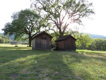 Old Structures in Fort Tejon. Two old wooden sheds under the shade of two large trees. Taken at California state park, Fort Tejon Stock Photos