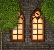 Two oldfashioned churchwindow Royalty Free Stock Images