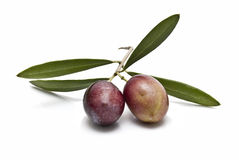 Two olives. Royalty Free Stock Images