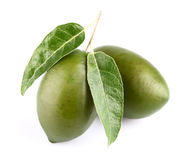 Two olives with leaf Royalty Free Stock Photo