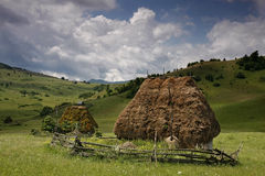 Two olld barn or shack with straw roof Stock Image