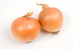 Two onion Stock Photography