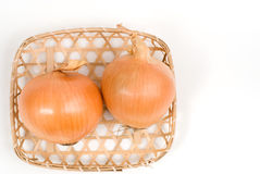 Two onion Royalty Free Stock Photo