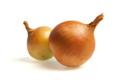 Two onion Royalty Free Stock Photography