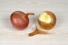 Two onion cloves Royalty Free Stock Image