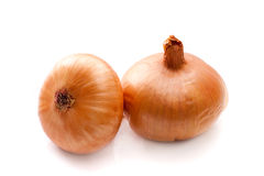 Two onions. On a white background closeup Royalty Free Stock Images