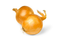 Two onions. Over white background stock image