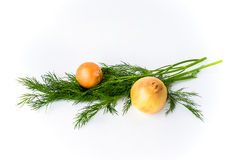 Two onions and dill isolated on white Royalty Free Stock Images