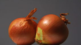 Two onions exposed in rotation. Two exposed in rotation onions stock video