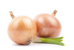 Two onions with greens Royalty Free Stock Photos