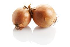 Two onions isolated stock image