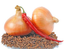 Two onions lie on condiment Stock Photos