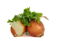 Two onions and parsley isolated Stock Image