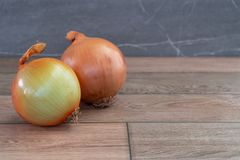 Two onions on wooden floor. Photo of two onions on wooden floor royalty free stock photos
