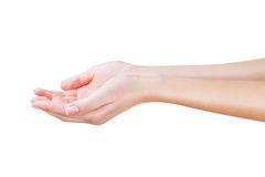 Two open empty hands Royalty Free Stock Images