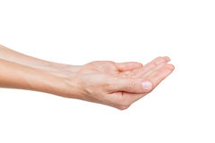 Two open empty hands Royalty Free Stock Photography