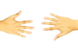 Two open hand of the opposite side Royalty Free Stock Image