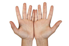 Two open hands. Stock Images