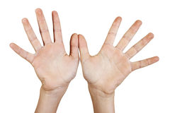 Two open hands. Royalty Free Stock Photo