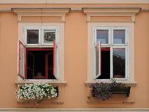 Two opened windows with flowers Royalty Free Stock Photos