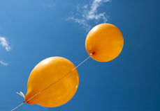 Two orange balloons Stock Image