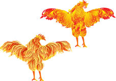 Two orange flame roosters on white Royalty Free Stock Photography