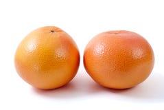 Two orange grapefruits. Isolated on the white background Royalty Free Stock Image