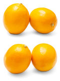 Two orange lemon. On a white background Stock Image