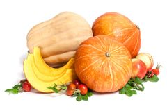 Two orange and one yellow pumpkins with three slices , two apples and rosehips. With leaves isolated on white stock photos