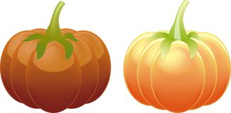 Two  orange pumpkin Stock Images